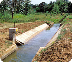 Irrigation Rehabilitation and Development Project